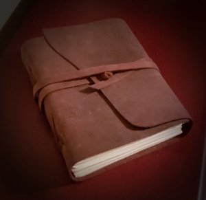 COVID-19 Journal Challenge
